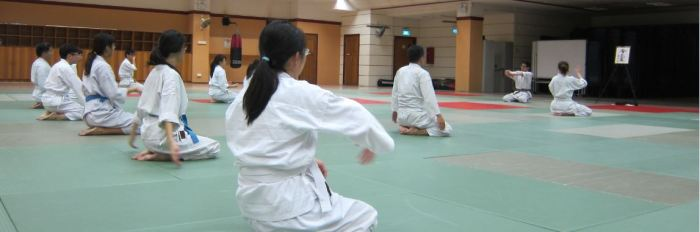 The Aikido ecosystem