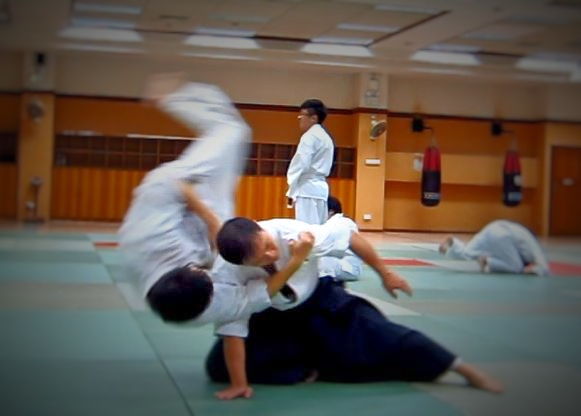 aikido-is-action_fotor