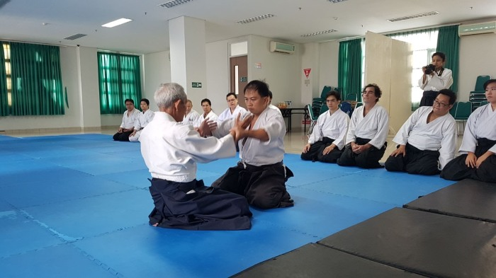 The Secret Super-hero Aikido Ah Gong